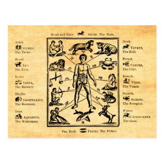 El cuerpo, según lo gobernado por las doce postal
