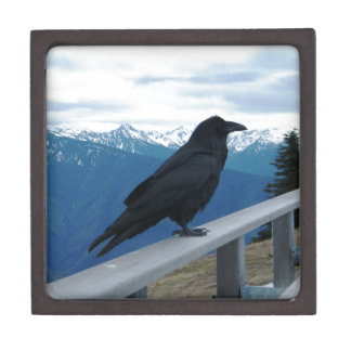 El cuervo caja de recuerdo de calidad