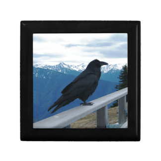 El cuervo caja de regalo