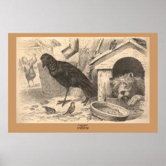 El cuervo común póster