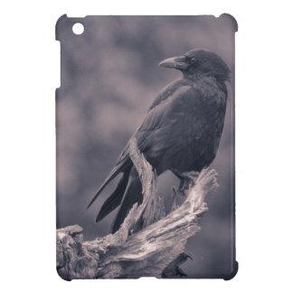 El cuervo de observación