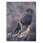 El cuervo de observación libros de apuntes