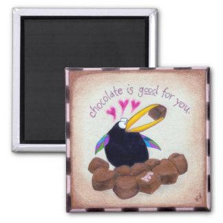 El cuervo dice que el chocolate es bueno para uste imán cuadrado
