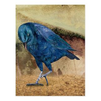 ¡El cuervo me llama! Postal