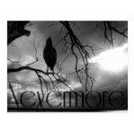 El cuervo - nunca más rayos de sol y árbol B&W Postales