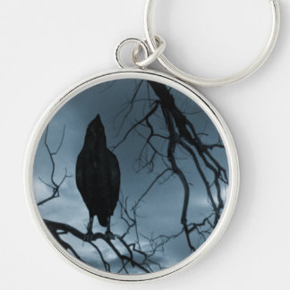 El cuervo - nunca más rayos de sol y azul del árbo llavero redondo plateado