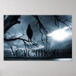 El cuervo - nunca más rayos de sol y azul del árbo poster