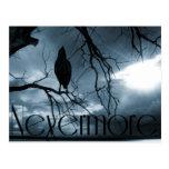 El cuervo - nunca más rayos de sol y azul del árbo postales