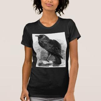 El cuervo playera