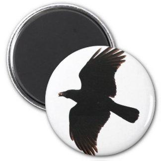 El cuervo por el Poe Imán Para Frigorifico