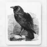 El cuervo tapetes de ratones