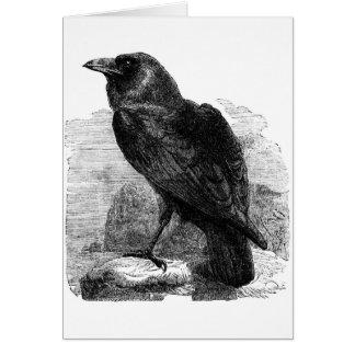 El cuervo tarjeta de felicitación