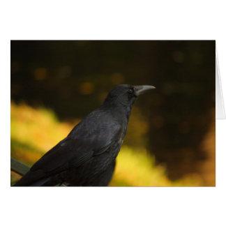 el cuervo tarjeta pequeña