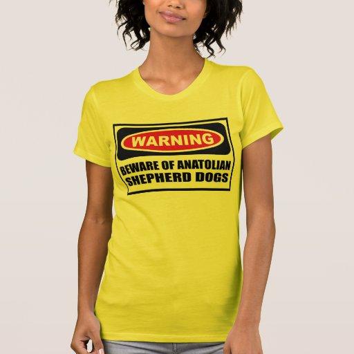 El cuidado SE GUARDA de mujeres DE ANATOLIA de los Camisetas