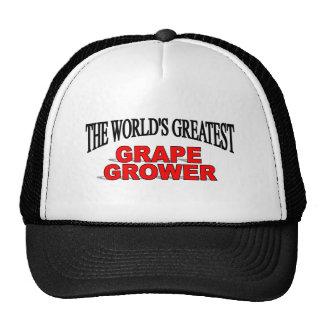 El cultivador más grande de la uva del mundo gorras