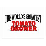 El cultivador más grande del tomate del mundo postal