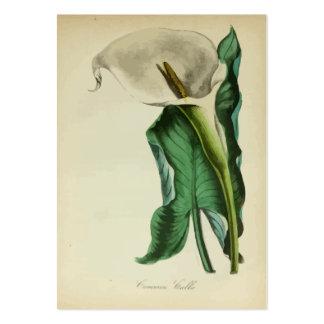 El cultivar un huerto botánico de la flor de la ca tarjetas de visita grandes