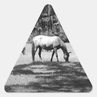 El Cumberland en negro Pegatina Trianguloada