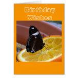 El cumpleaños desea la tarjeta 6 de la mariposa