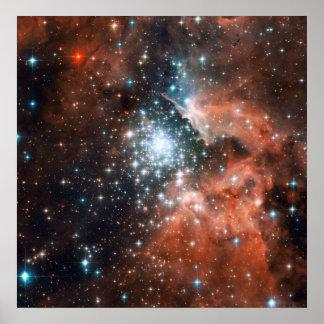 El cúmulo de estrellas estalla en vida en la nueva posters