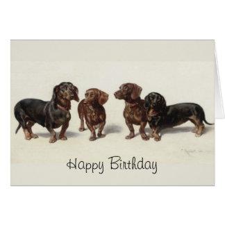 El Dachshund persigue la tarjeta de cumpleaños de