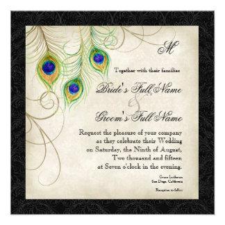 El damasco del negro de la pluma del pavo real de anuncio personalizado