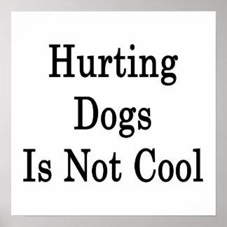 El daño de perros no es fresco posters