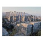 El Decumanus del sur, Jerash, Jordania Tarjeta Postal
