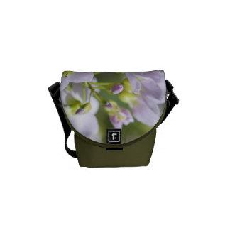El delantal de señora de la foto de la bella arte  bolsa messenger