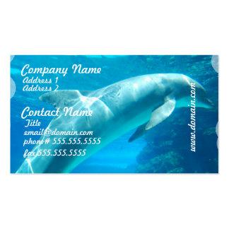 El delfín burbujea las tarjetas de visita