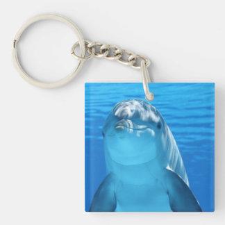 El delfín de Bottlenose mira la cámara debajo del Llavero Cuadrado Acrílico A Doble Cara