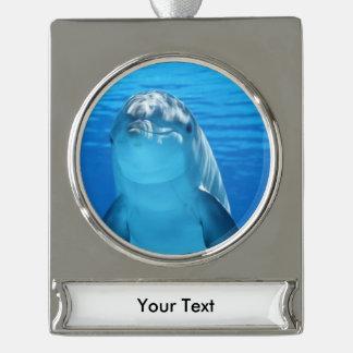 El delfín de Bottlenose mira la cámara debajo del Adornos Personalizables