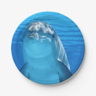 El delfín de Bottlenose mira la cámara debajo del Platos De Papel