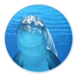 El delfín de Bottlenose mira la cámara debajo del Pomo De Cerámica