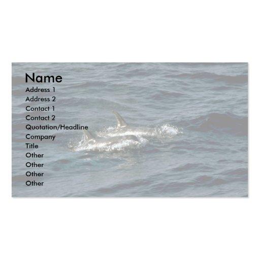 El delfín de Risso Tarjetas De Visita