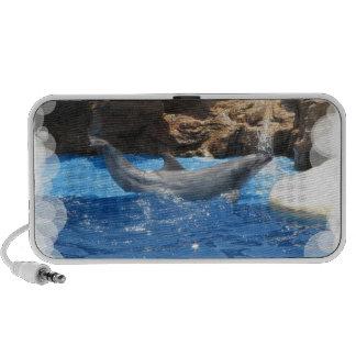 El delfín engaña altavoces