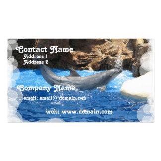 El delfín engaña la tarjeta de visita