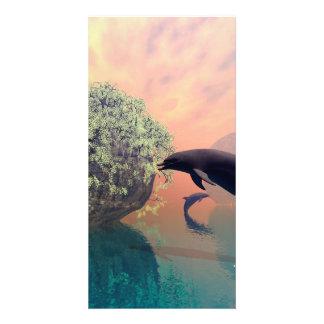 El delfín que juega y de salto en una fantasía plantilla para tarjeta de foto