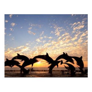 El delfín que salta del agua en la puesta del sol tarjeta postal