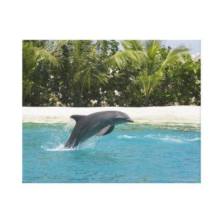 El delfín que salta la imagen tropical de la playa impresiones en lienzo estiradas
