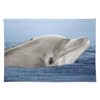 El delfín sonriente mantel individual