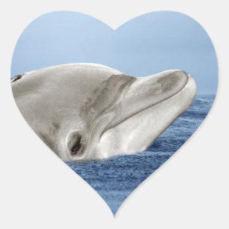 El delfín sonriente pegatina