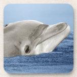 El delfín sonriente posavasos de bebidas