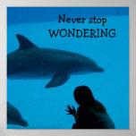 """El delfín y el océano """"nunca paran el preguntarse"""" impresiones"""