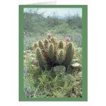 El desierto florece tarjeta de nota del cactus o
