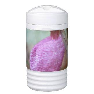 El deslizador de señora enfriador de bebida igloo