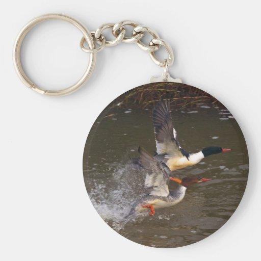 El despegue del pollo de agua llavero redondo tipo pin