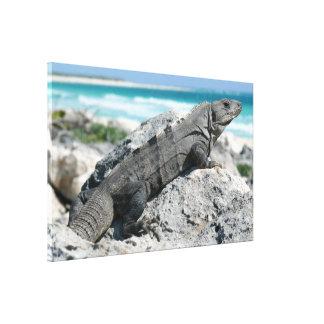 El día de la iguana impresiones en lona estiradas