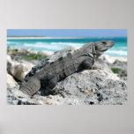 El día de la iguana póster