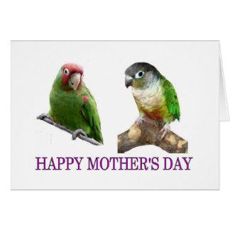 El día de madre de Conure Tarjeta De Felicitación